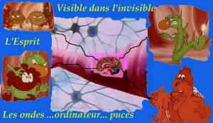 Esp.le  visible dans l'invisible du cerveau