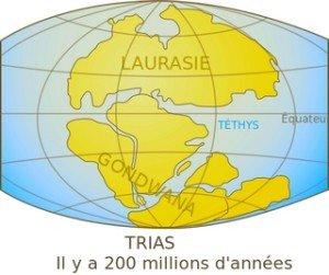 Antar.-Laurasie ou la Terre il y a 100milliond d'années