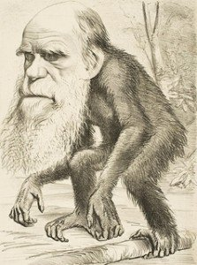 Rel-Darwin Charles Édirorial 1871