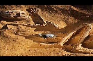 Nephilim-squelette-original-pyramid-builders