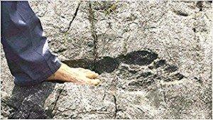 Ant-Marque d'un pied humain d'avant le Déluge, Les causes du Délige (Copier)