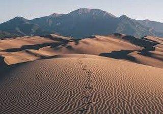 Carm-les dunes