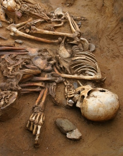 Néphilim-Squelette.-reste ossement des géants